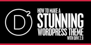 Create A stunning WordPress Theme with Divi 2.0